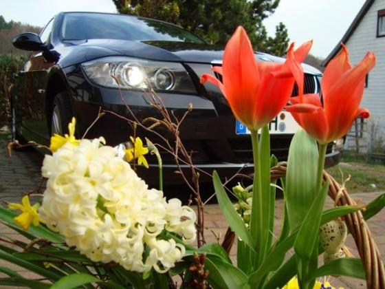 E90 Frühling